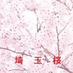 桜の開花情報 埼玉