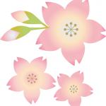 日本気象協会 桜の開花予想2016 第3回