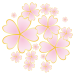 桜の開花予想2019 ウェザーマップ