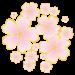 ウェザーマップ桜開花予想